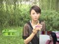 《最佳现场片花》20110919 曹颍产后首度受访吐槽颜丹晨