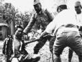 1937南京浩劫(下)