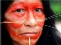去你的亚马逊:猫人重生