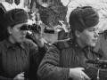 钢铁的城郭:斯大林格勒保卫战