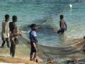 非洲十年系列之谁动了我的渔网