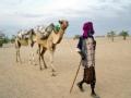 非洲十年系列之厄立特里亚