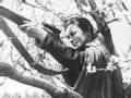 二战苏军美女狙击手柳德米拉