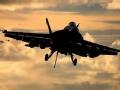 """空中""""不死鸟"""":美国F_A-18战斗机"""