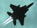 美军两鹰相遇伊拉克上空