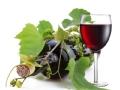 不断片儿的葡萄酒记忆