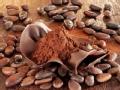 枫叶的诱惑第1集:博士的巧克力店