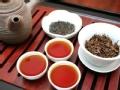 《拥抱南亚》特别节目:锡兰茶传奇