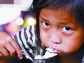 2011粮食危机再临