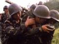 故事南洋中国军人在越南