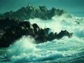 聒噪的海洋