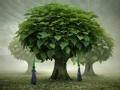 """""""树""""说故居"""