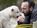 小北极熊克努特的挽歌