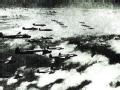 覆亡之路 美军首次轰炸日本本土秘闻
