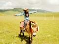 别说你懂内蒙古 草原的财富