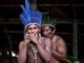 去你的亚马逊之生存法则