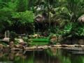 去你的亚马逊 自然定制