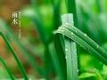 守望之农历二十四节气 天时地利的日程表