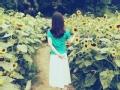 夏天的背影