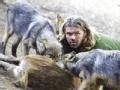 """""""狼王""""肖恩 与野兽争夺王位的人"""