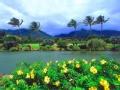 不一样的夏威夷