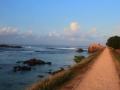 许巍斯里兰卡之旅 音乐在路上