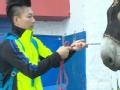 《极速前进中国版第一季片花》李小鹏训驴有妙招 把驴比做小奥莉