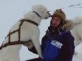 北极制造 北极雪橇队