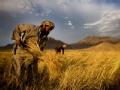 阿富汗十年 弹孔下的生活