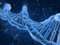 DNA背后的恶魔