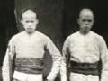 晚清军事图志(5)龙旗易帜