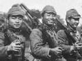 1945越南受降内幕(上)