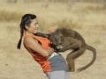 《极速前进中国版第二季片花》第七期 韩庚遭狒狒尴尬脱衣 筷子兄弟驯服非洲豹