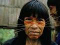 去你的亚马逊 猫人重生