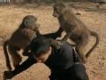 《极速前进中国版第二季片花》第七期 丁子高夫妇把狒狒当儿子 两狒狒同骑丁子高背上