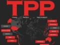 """TPP协议达成 落实还将""""路漫漫"""""""
