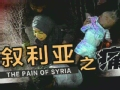 叙利亚之痛