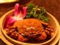 我爱大闸蟹