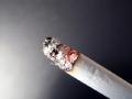 都是烟头惹的祸
