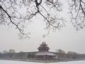 冬天到北京来看雪