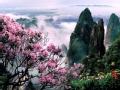 莽山公园聆听春色