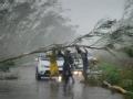 台风刮过之后