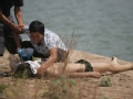 少年溺水之后