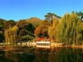 香山公园不只有红叶