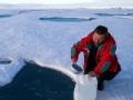北极破冰行动 荒原独行者