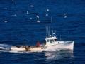 美军核潜艇撞沉日本渔船之谜