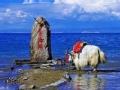 青海湖异象之谜