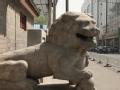 看懂北京城 狮子有话说