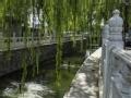 看懂北京城 瞧瞧这些桥