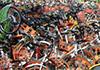 航拍数万辆共享单车堆满校园操场
